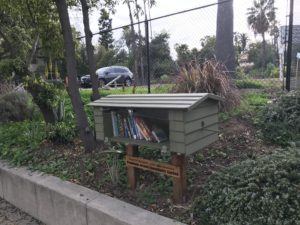 PCG Little Free Library3